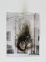 Bertola-Sad-Bones-Unknown-Interior-#3-2013-02