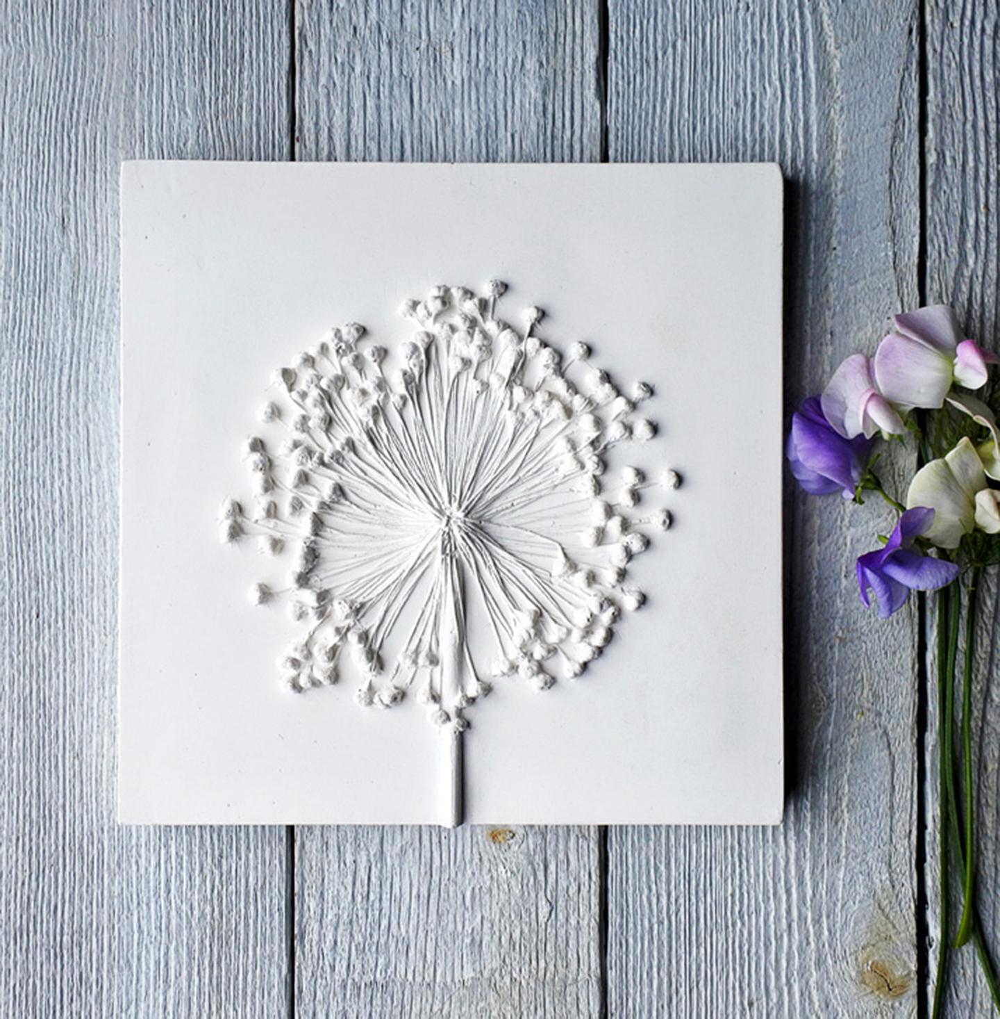 Gray-Allium-4-1440px-wide-7