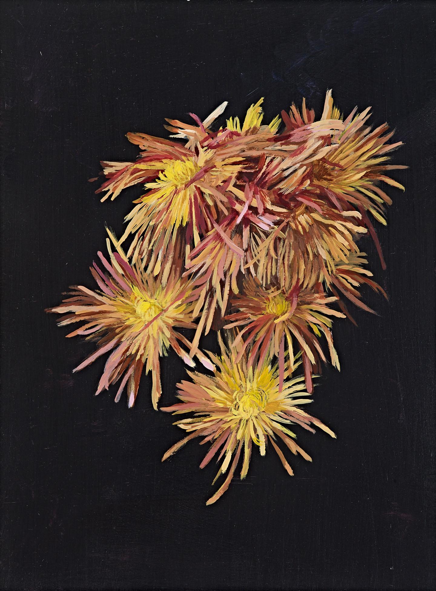 Bradley-chrysanthemums-1440px-wide-3
