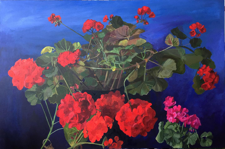 Bradley-geraniums-redandpink-1440px-wide-5