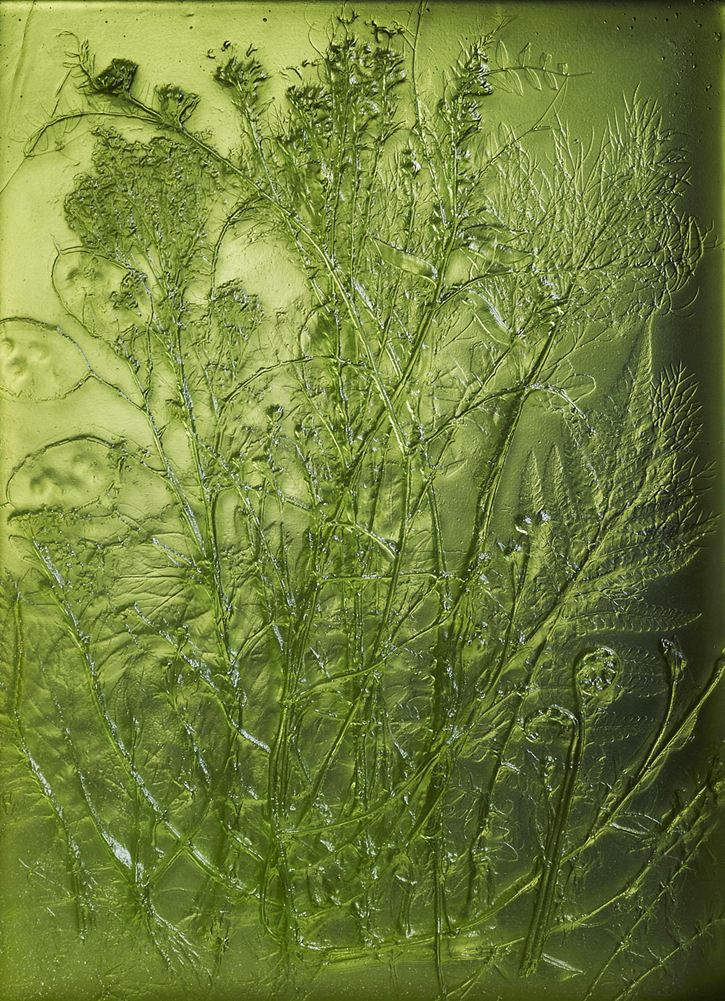 Woolhouse-Meadow-03