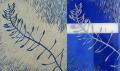 Woolhouse-Unkraut|Weed-07