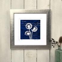 'Dandelions' by Fiona Grey