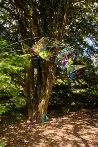 En'Light'en: Taxus Baccata, Cheeseburn Sculpture Park